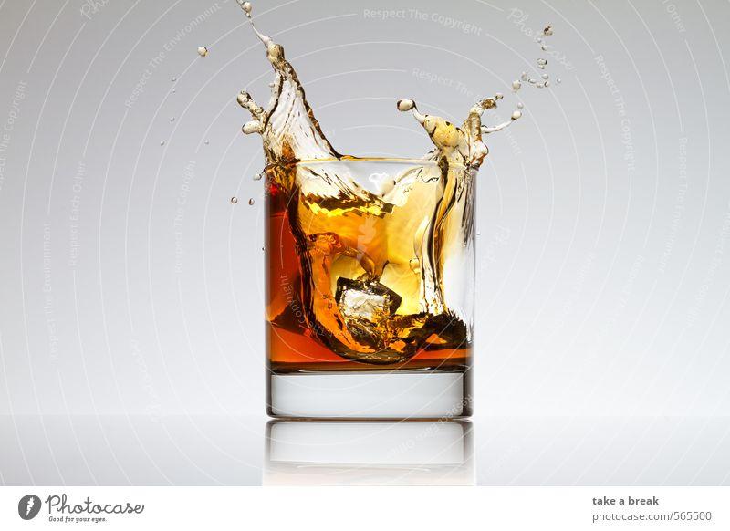 Spritzer im Glas Lebensmittel Getränk Erfrischungsgetränk Heißgetränk Limonade Saft Tee Alkohol Spirituosen Wasser braun gelb orange Farbfoto Studioaufnahme