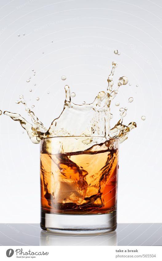 Spritzer im Glas Lebensmittel Getränk Erfrischungsgetränk Heißgetränk Limonade Saft Tee Alkohol Wasser Tropfen Coolness nass Sauberkeit braun mehrfarbig gold