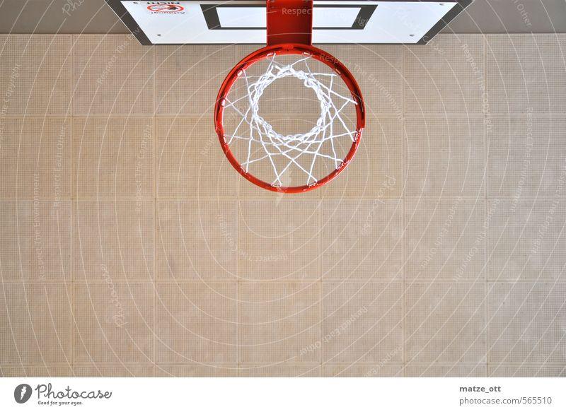 viel zu klein zum Stopfen Sport Spielen Freizeit & Hobby hoch Kreis Sportmannschaft sportlich Team Netz Höhenangst Flugangst Holzbrett Höhe Decke Korb Basketball