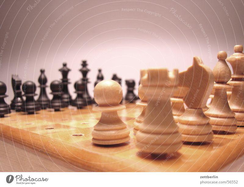 Schach Spielen Turm Dame Ass König Läufer Eröffnung Brettspiel