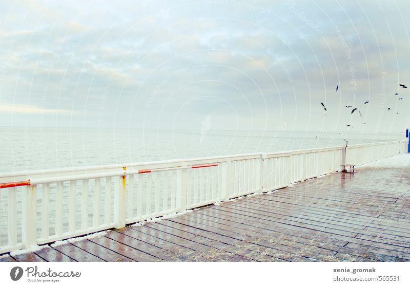 Winterschlaf Tourismus Ferne Freiheit Sightseeing Städtereise Strand Meer Schnee Winterurlaub Umwelt Landschaft Wasser Himmel Wolken Horizont Klima Klimawandel