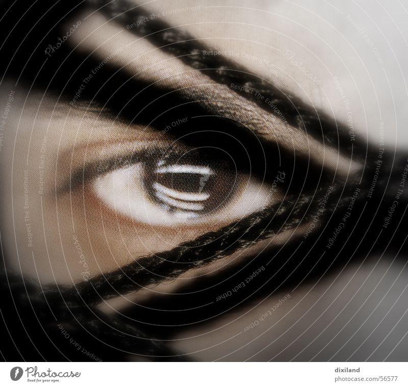 Blickfang Mensch Gesicht Auge Netz
