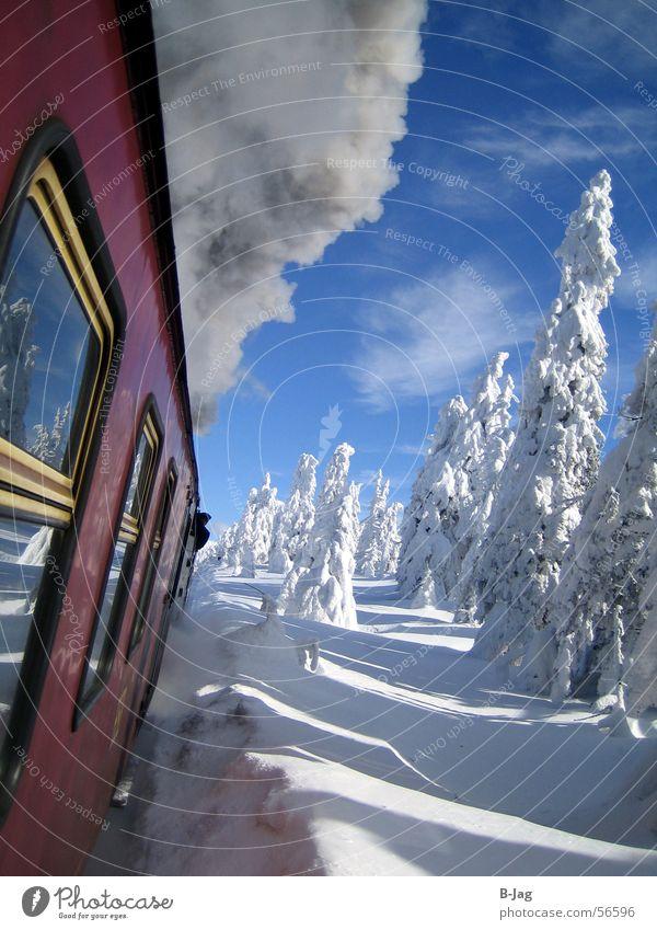 Brocken-Bahn Winter kalt weiß Eis Geschwindigkeit gemütlich Baum Schnee Fenster grau verraucht Rauch Außenaufnahme Aktion Landschaft Klarheit Eisenbahn
