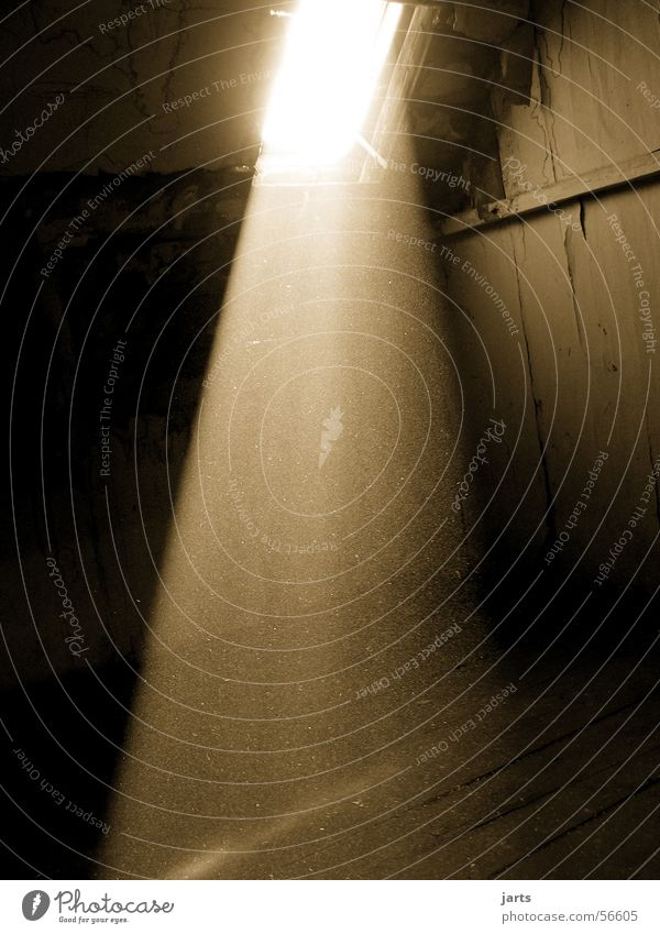 Wenn Licht ins dunkle fällt.... dunkel Fenster Sonnenstrahlen Staub Haus Wohnung Dachboden verfallen jarts