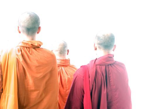 Mönche rot gelb Kopf Religion & Glaube orange Asien Glatze Thailand Umhang Erkenntnis Geistlicher Tracht Buddha Asiate Buddhismus