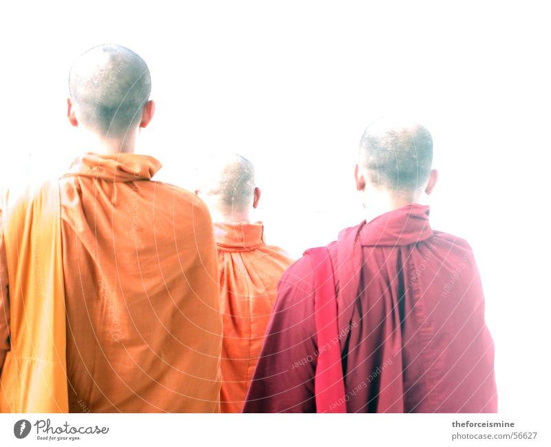 Mönche Thailand Glatze Robe Tracht rot gelb Umhang Religion & Glaube Erkenntnis Licht Gegenlicht Geistlicher Buddhismus Asien Asiate Buddha orange Kopf