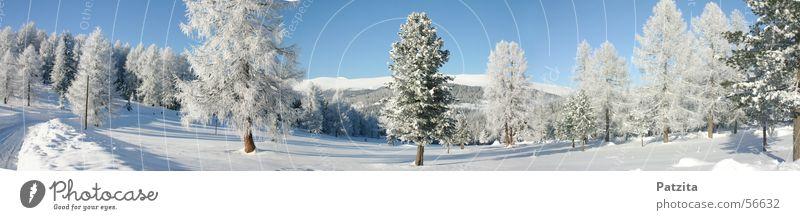 Schnee Schnee Schnee Winter Baum Himmel Berge u. Gebirge Landschaft