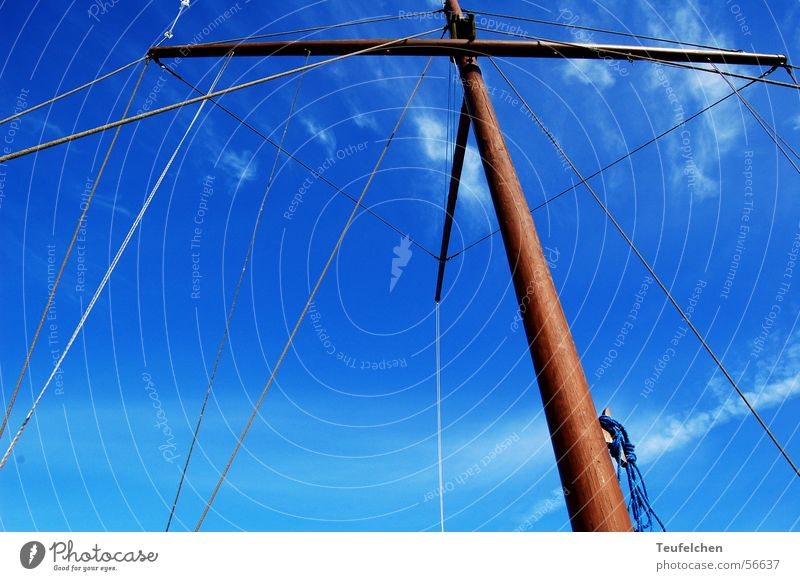 Hoch hinaus Himmel Sonne blau Winter Holz Wasserfahrzeug Seil Hafen Strommast Segel Dänemark Ringkøbingfjord