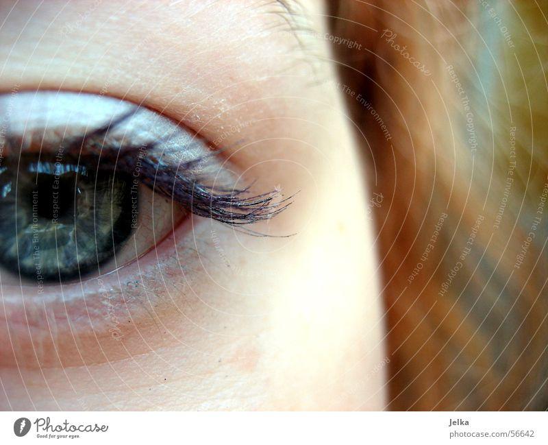 Ei, ei, ei, ... Haare & Frisuren Gesicht Wimperntusche Auge blau grau Lidschatten Blick Frauenaugen Pupille Nahaufnahme Augenfarbe geschminkt 1 Anschnitt