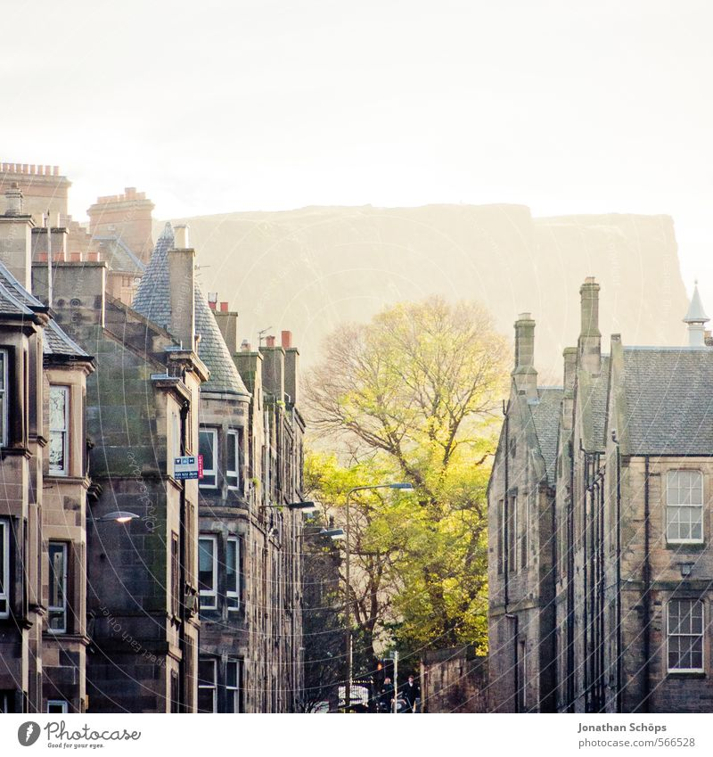 Edinburgh XIII Baum Felsen Berge u. Gebirge Schottland Großbritannien Stadt Hauptstadt bevölkert Haus Fassade Dach Schornstein ästhetisch leuchtend grün