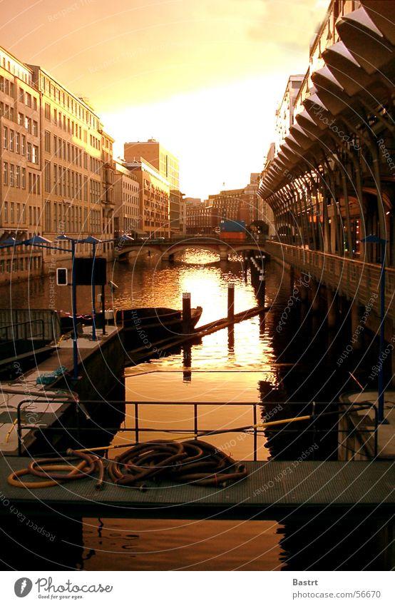 Hafenstadt Sonne Sommer Haus kalt Gebäude Wärme Wasserfahrzeug Deutschland Hamburg Brücke Fluss Physik U-Bahn Markt Schlauch