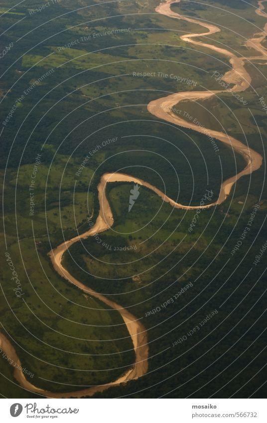 Natur Ferien & Urlaub & Reisen grün Wasser Pflanze Landschaft Ferne Wald Leben Freiheit Erde Horizont träumen braun fliegen Wetter