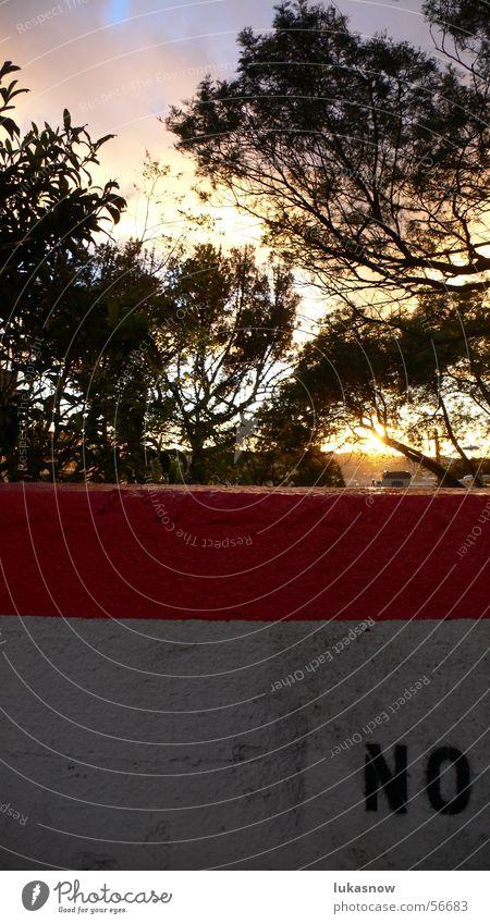 NO Spray Schablone Wand Streifen Putz Baum Wolken Sonnenuntergang Gegenlicht Physik graphisch San Francisco no yes ja nein Graffiti stencil Farbe Ast Wärme