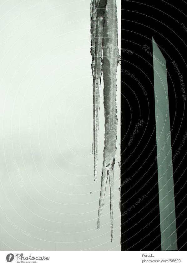 Eiszapfen Wasser Himmel Winter kalt Fenster grau Eis Tür Frost Häusliches Leben gefroren Balkon Rahmen Eiszapfen Türrahmen