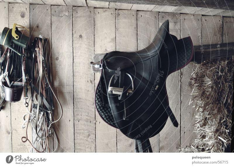 l´appui Pferd Stall Holz Steigbügel Leder Zaumzeug Scheune Holzbrett Reitsport Sattel
