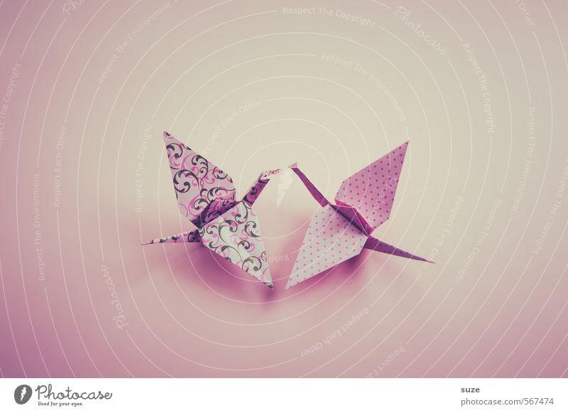 Traumtänzer schön Tier Liebe klein Kunst Vogel rosa fliegen Freizeit & Hobby Design Tierpaar Dekoration & Verzierung ästhetisch niedlich Kreativität Papier