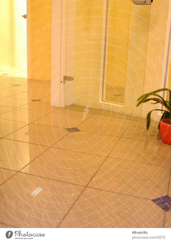 RAum/halbe/Pflanze Raum Tür Häusliches Leben