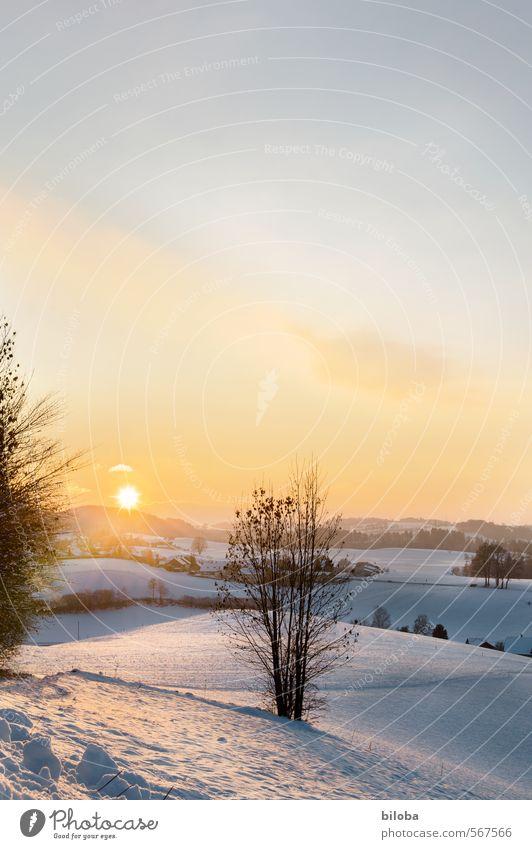 Was für ein Sommerwetter blau Pflanze weiß Sonne Landschaft Winter gelb Gefühle orange Hügel Schweiz