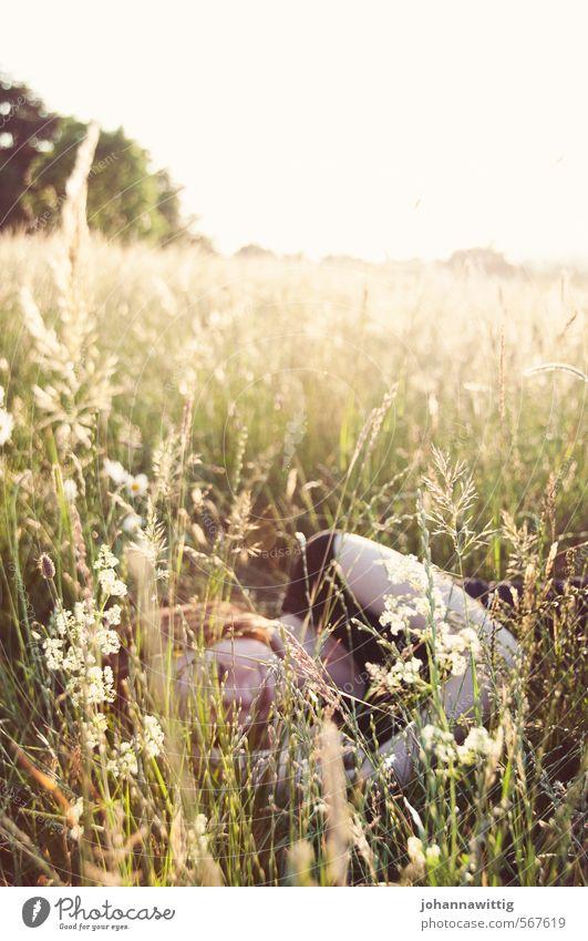 lass dich fall'n feminin Junge Frau Jugendliche Leben 1 Mensch 18-30 Jahre Erwachsene Umwelt Wärme Pflanze Gras Sträucher Grünpflanze Park Wiese Feld