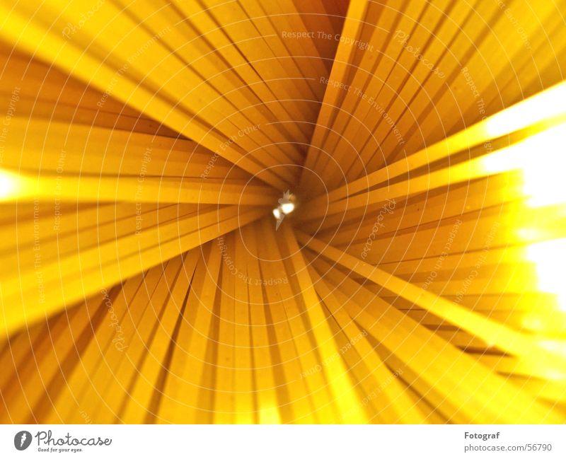 Nudelstrauß. Wasser Sonne gelb Beleuchtung orange Lebensmittel Ernährung Spitze Kochen & Garen & Backen Italien Gastronomie lang Blumenstrauß Loch Makroaufnahme Spirale