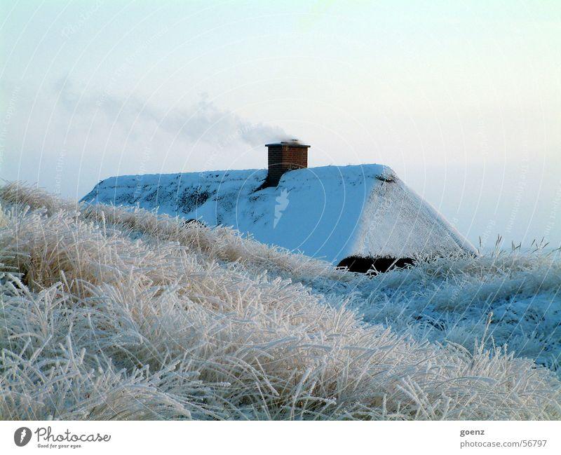 Warmes Heim Haus Winter kalt Reetdach Strohdach Stranddüne Ferien & Urlaub & Reisen Nordsee Dänemark Schornstein Rauch