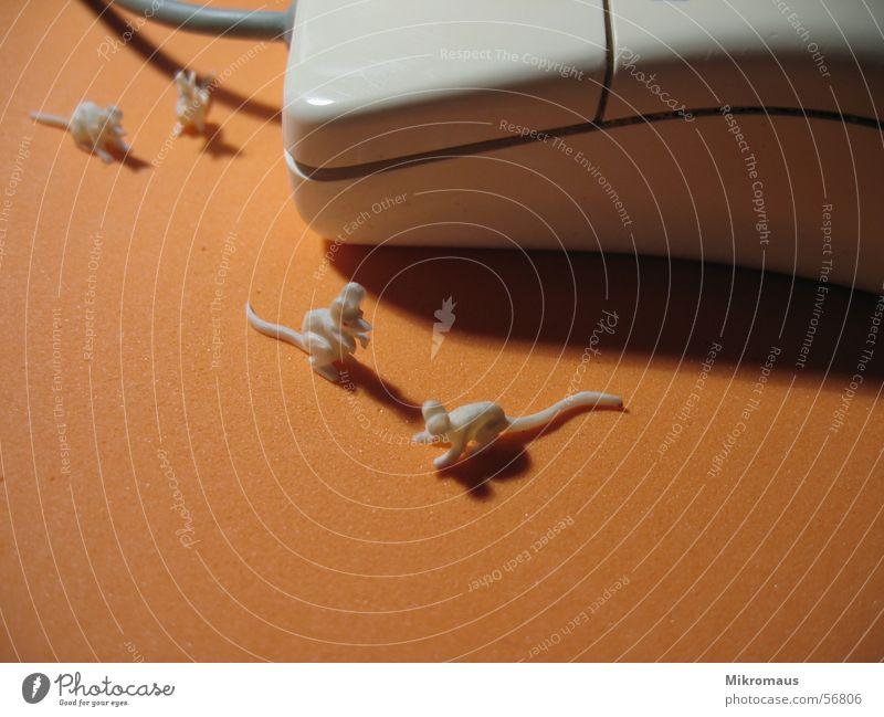 Mouse mit Mäusen Tier Arbeit & Erwerbstätigkeit Business Computer Informationstechnologie Technik & Technologie Figur Maus Computermaus Büroarbeit