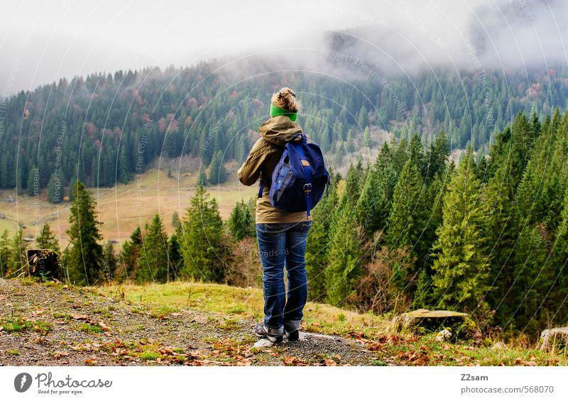 Herbstwanderung Ausflug Berge u. Gebirge wandern feminin Junge Frau Jugendliche 18-30 Jahre Erwachsene Natur Landschaft Wetter Nebel Baum Sträucher Wald Alpen