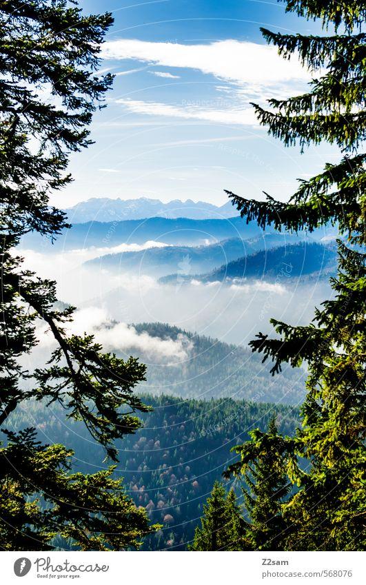 bob ross Berge u. Gebirge wandern Natur Landschaft Himmel Wolken Herbst Schönes Wetter Baum Sträucher Wald Alpen ästhetisch Kitsch nachhaltig blau grün ruhig