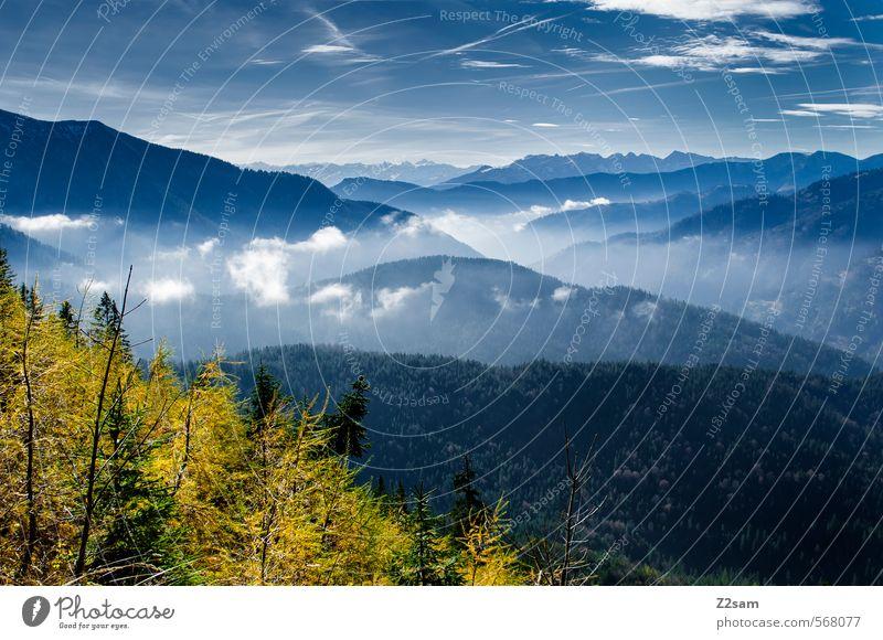 Herbstwandern Himmel Natur blau grün Baum Landschaft Wolken Wald Umwelt Berge u. Gebirge Gesundheit Horizont Idylle Sträucher