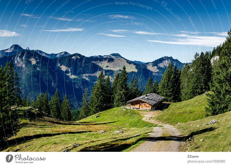 Wandertag Himmel Natur Einsamkeit Landschaft ruhig Ferne Wald Umwelt Berge u. Gebirge Herbst Freiheit natürlich Freizeit & Hobby Idylle Tourismus wandern