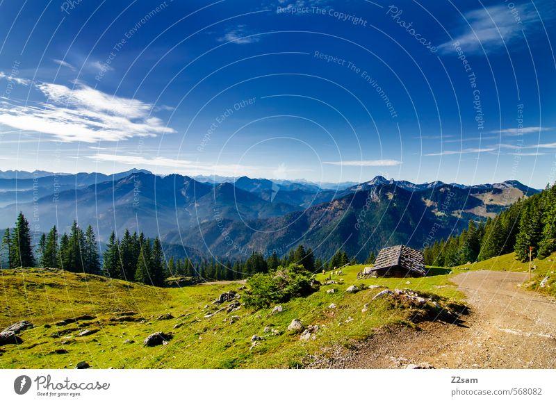 Wandertag Himmel Natur Baum Einsamkeit Landschaft ruhig Ferne Umwelt Berge u. Gebirge Herbst Wege & Pfade Freiheit natürlich Freizeit & Hobby Idylle Tourismus