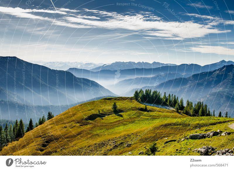 Gute Aussichten Ferien & Urlaub & Reisen Berge u. Gebirge wandern Natur Landschaft Himmel Herbst Schönes Wetter Wiese Wald Alpen Gipfel frisch Unendlichkeit