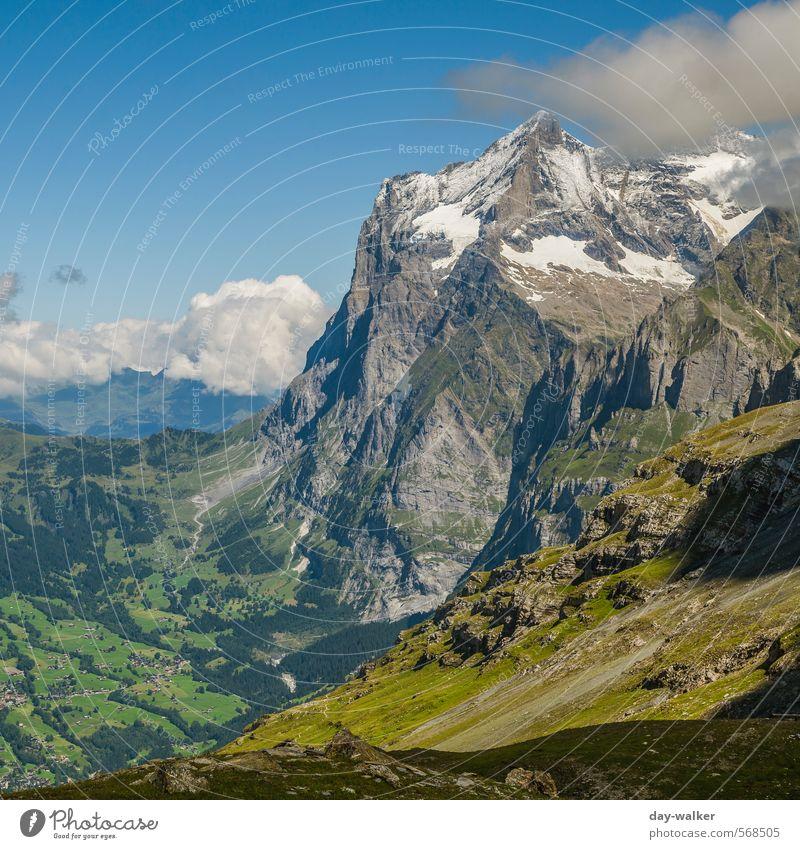 Am Fuße der Eiger-Nordwand Natur Landschaft Himmel Wolken Sommer Schönes Wetter Schnee Gras Moos Felsen Alpen Berge u. Gebirge Gipfel Schneebedeckte Gipfel