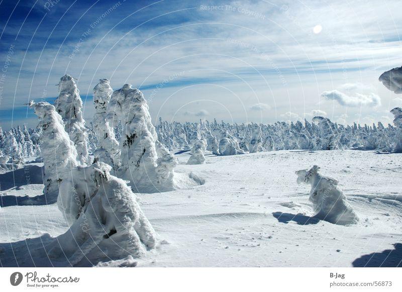 Schlumpfhausen Natur Himmel Baum blau Winter Wolken Wald kalt Schnee Landschaft Eis Schneelandschaft Bruchstück Winterwald verweht