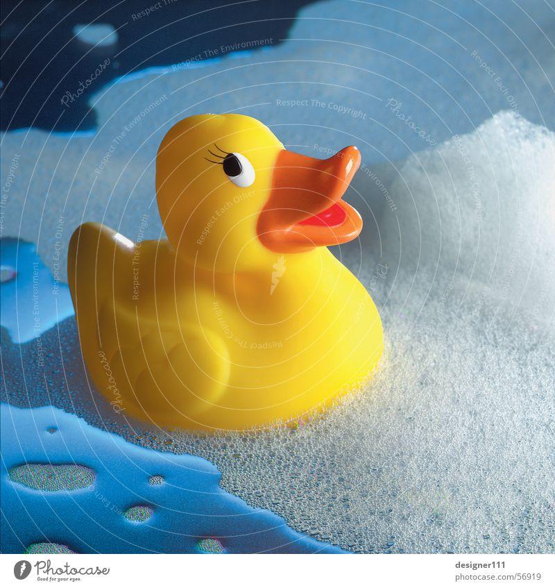 Quietscheente blau Wasser Freude gelb kalt Wärme lustig Schwimmen & Baden nass Romantik Badewanne Physik Spielzeug Ereignisse Ente Schaum