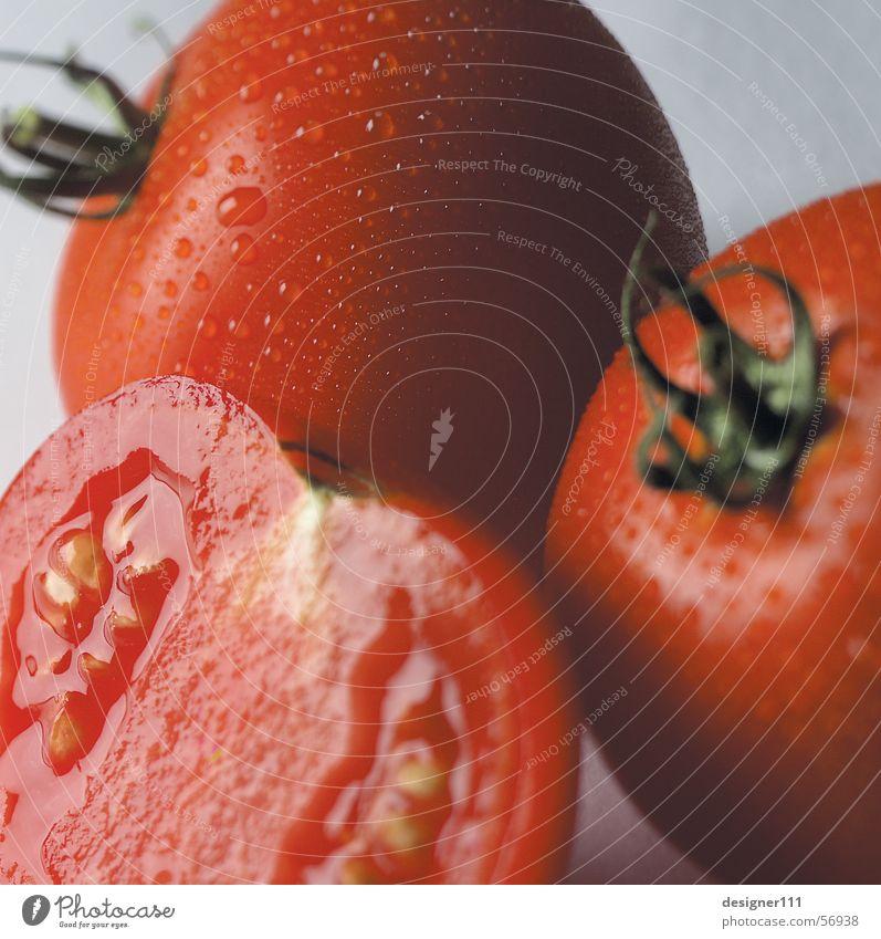 Tomaten rot Gesundheit Ernährung Gemüse Italien Stillleben Spanien Griechenland Türkei Vorspeise