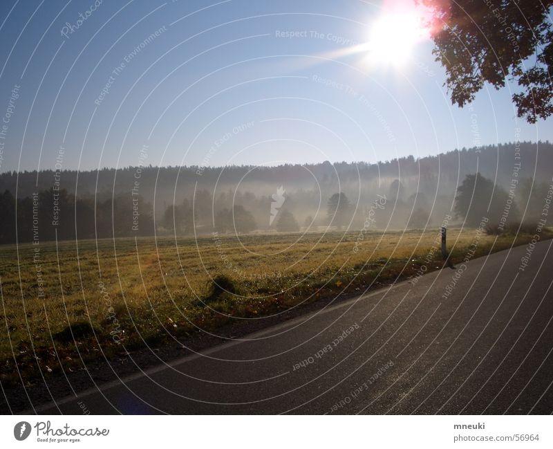 Herbststimmung Sonne Wald Landschaft Feld Nebel