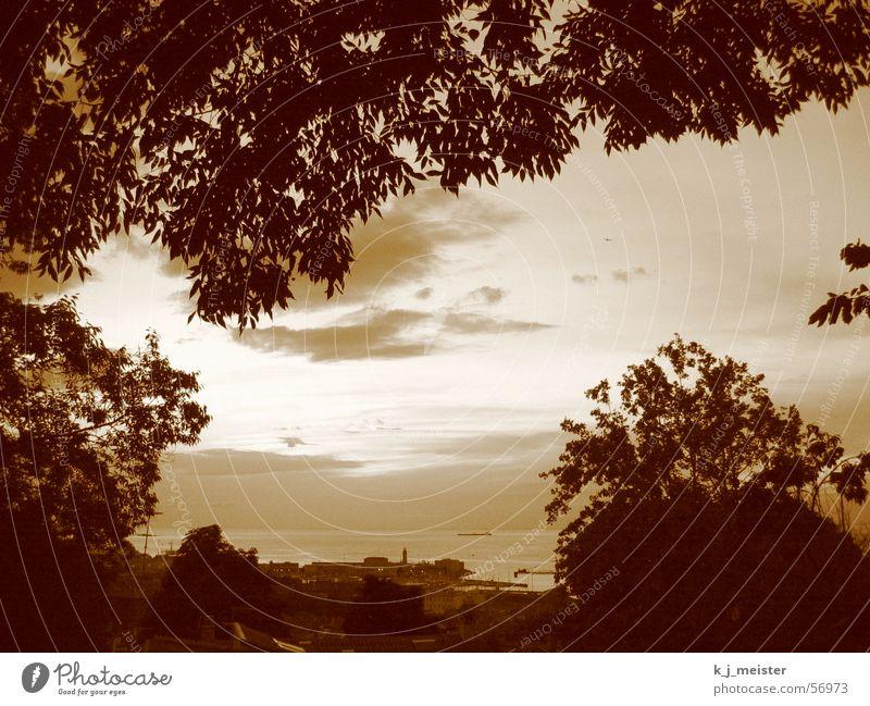 Himmel über Trieste Himmel Aussicht Hafen Abenddämmerung Sepia Triest