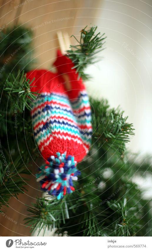 das vierte Adventswichtelmützchen Lifestyle Freude Freizeit & Hobby Häusliches Leben Dekoration & Verzierung Weihnachten & Advent Winter Tannenzweig Mütze