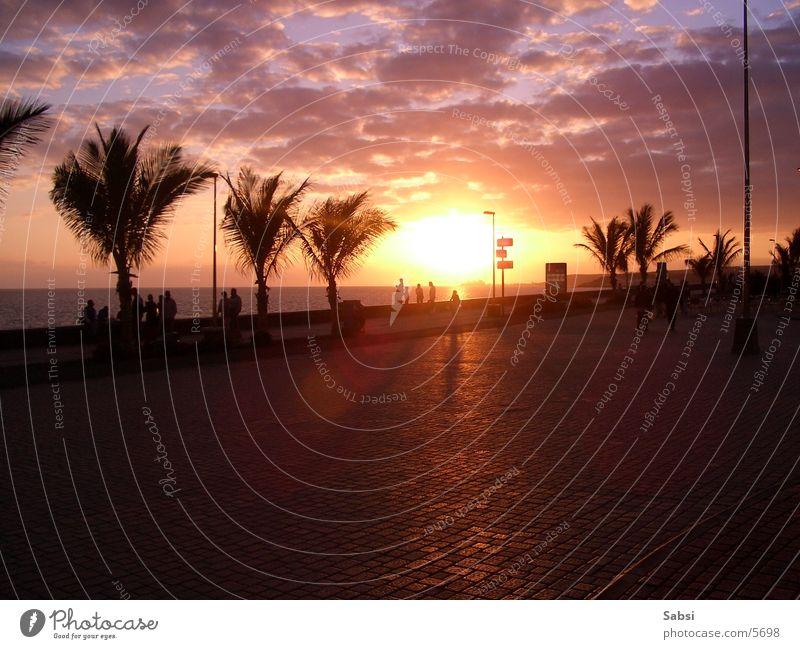 Sunset Sonnenuntergang Palme Strand Wolken Europa Straße