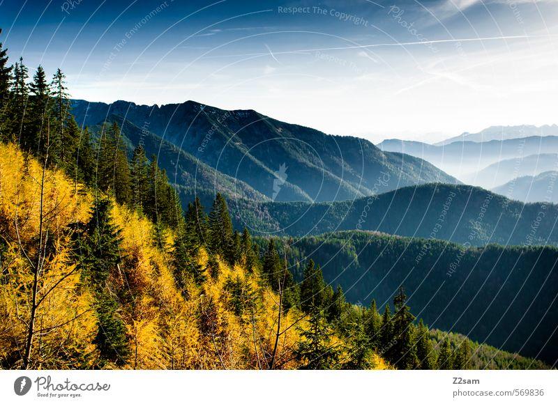 Herbstpanorama Natur blau grün Baum Landschaft ruhig Wald gelb Umwelt Berge u. Gebirge oben natürlich Stimmung Idylle Sträucher