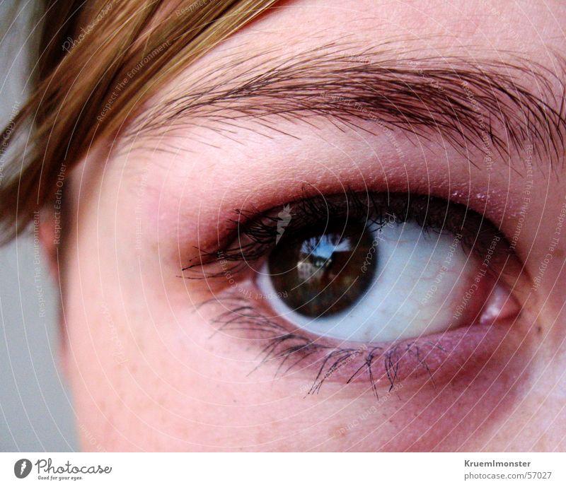 Sehnsucht Haus Auge Traurigkeit braun Trauer Wimpern Augenbraue Seele Pupille Tusche Lidschatten