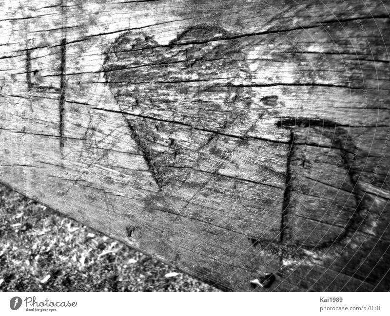 Für die Ewigkeit Natur alt Baum rot Pflanze Liebe Holz Paar braun Feste & Feiern Herz Bank Sitzgelegenheit hart Frühlingsgefühle lieblich