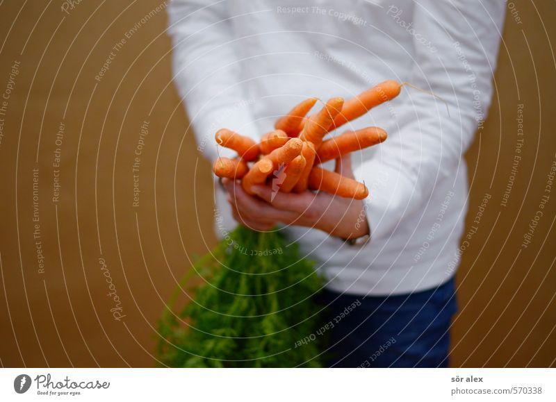 viele Möhrchen Lebensmittel Gemüse Essen Bioprodukte Vegetarische Ernährung Diät feminin Frau Erwachsene Hand Oberkörper 1 Mensch Gesundheit Gesundheitswesen