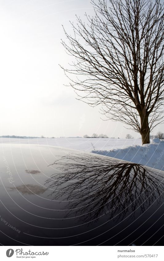entgegenweg Natur Baum Landschaft Winter Ferne dunkel Umwelt Traurigkeit Schnee Gefühle Horizont Kunst träumen Eis wandern Schönes Wetter
