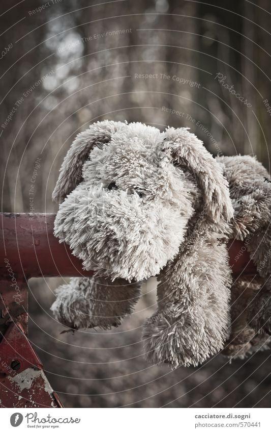 Knuddel mich mal Hund 1 Tier Stofftiere Spielzeughund alt dreckig dunkel kuschlig braun grau Sympathie Freundschaft Treue bescheiden Traurigkeit Liebeskummer