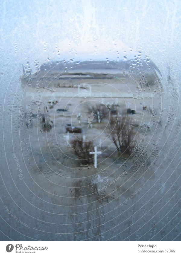 Friedhof Fenster Religion & Glaube Rücken gelehrt unheimlich