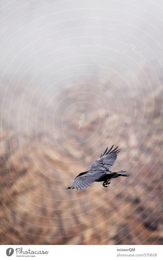 I.love.FV XII Kunst ästhetisch Tier Vogelperspektive Vogelflug Rabenvögel fliegen Nebel Berge u. Gebirge Ferne dunkel Farbfoto Gedeckte Farben Außenaufnahme