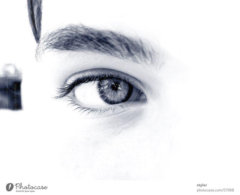 Auge Pupille Gesicht augenbraun Blick