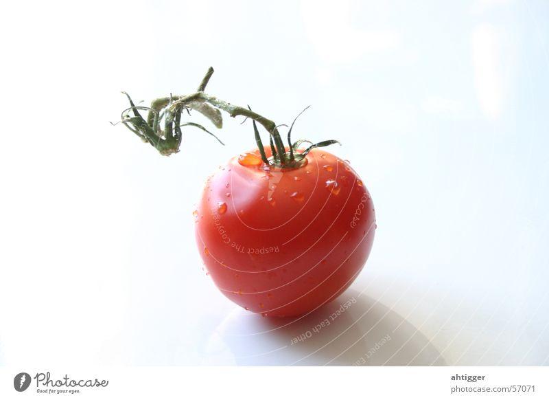 Frische Tomate Gemüse Tomate